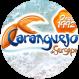 Caranguejo de Sergipe